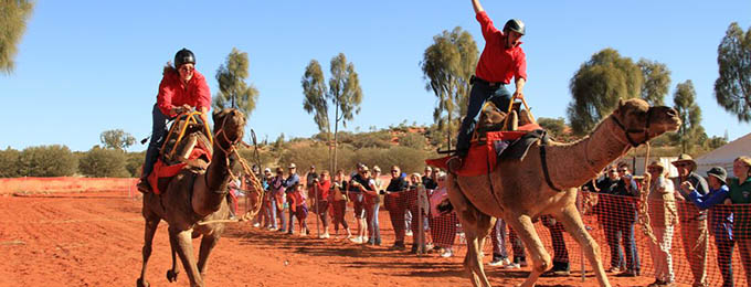 events camel cup