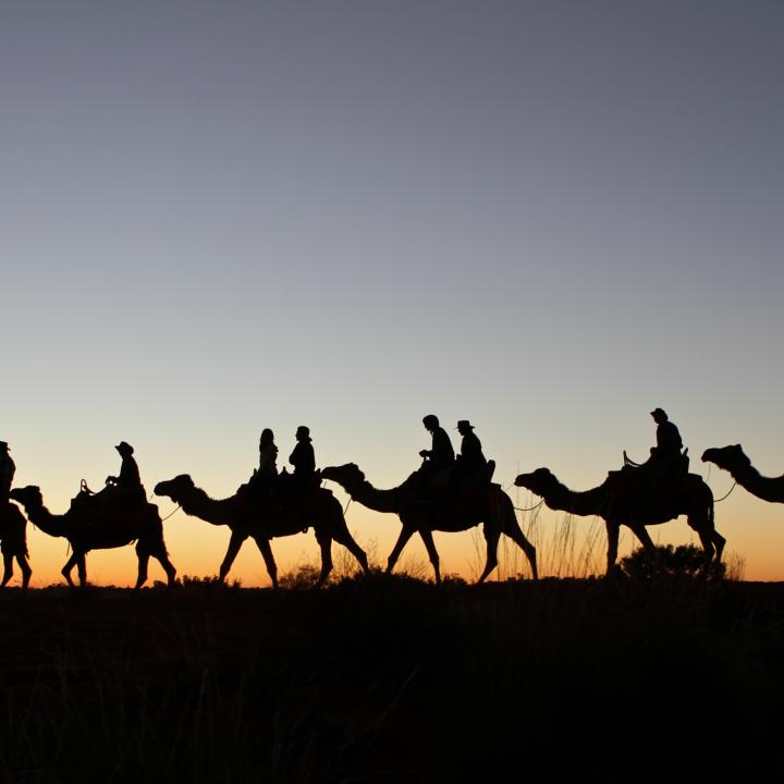 A silhouette of people riding camels at sunset