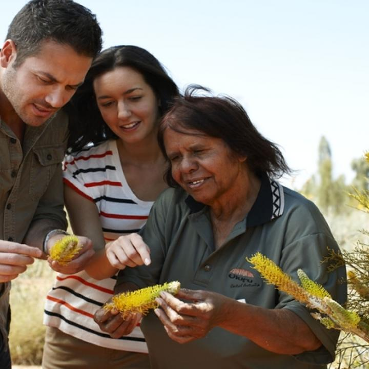 exploring indigenous food
