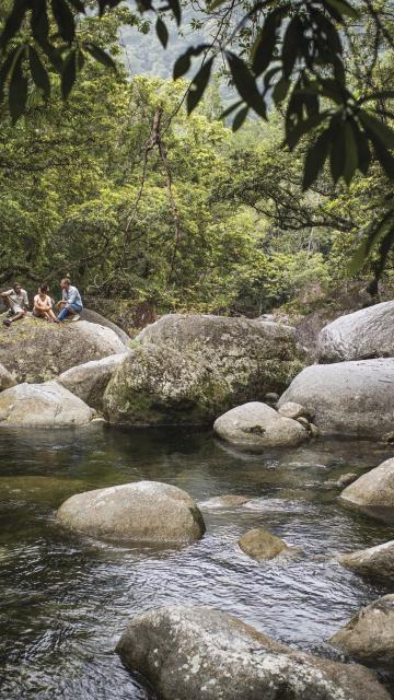a creek at Mossman Gorge