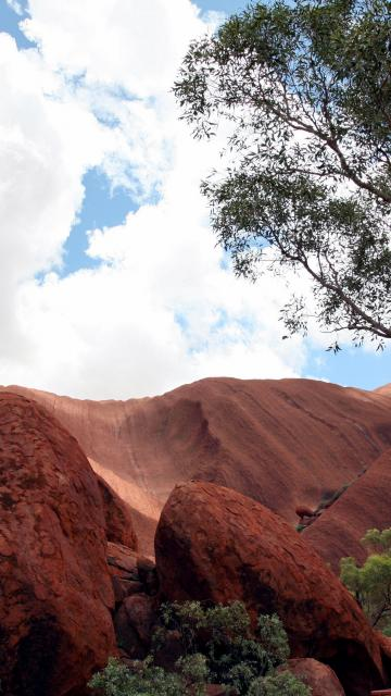 Uluru, looking up